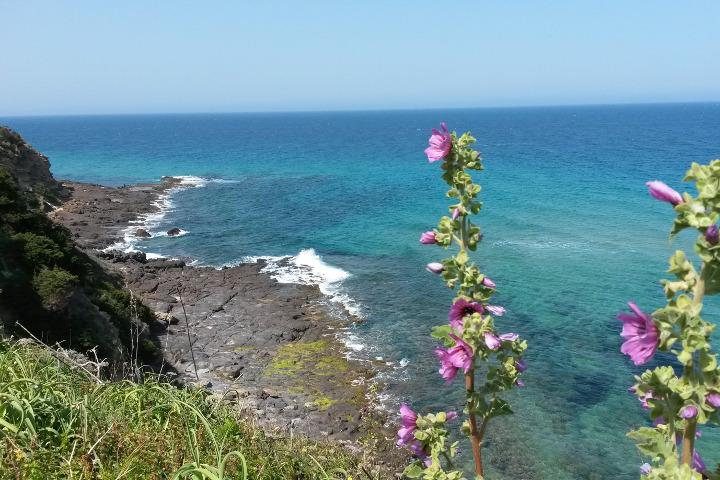 Punta La Capra
