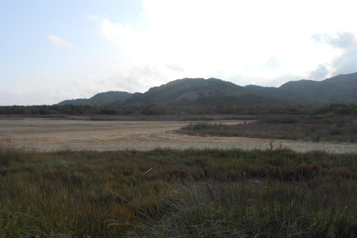Uno stagno vicino Berchida