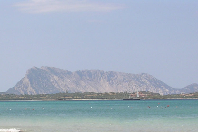 View of Tavolara island