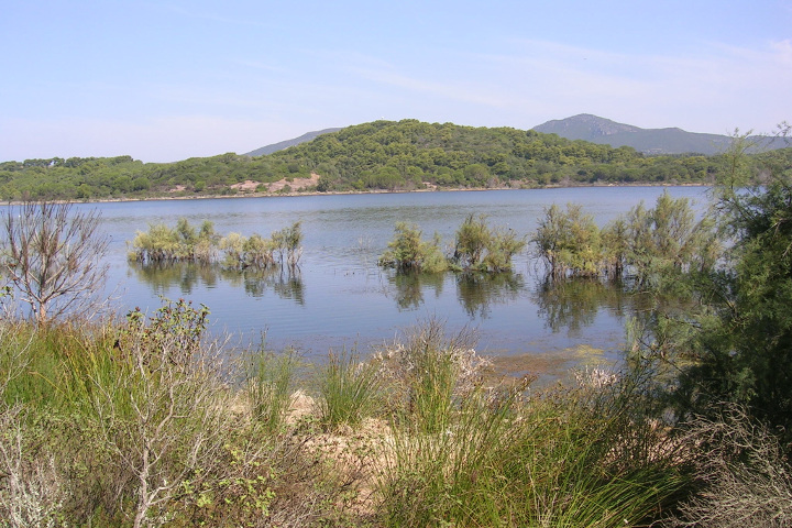 Environment of Lake Baratz
