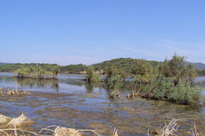 Le acque del Lago di Baratz