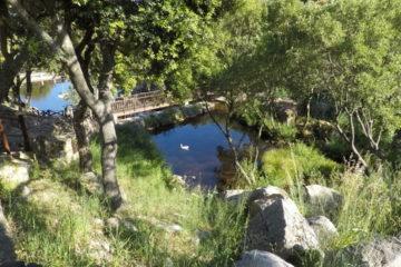 Lakes in Santa Degna Park