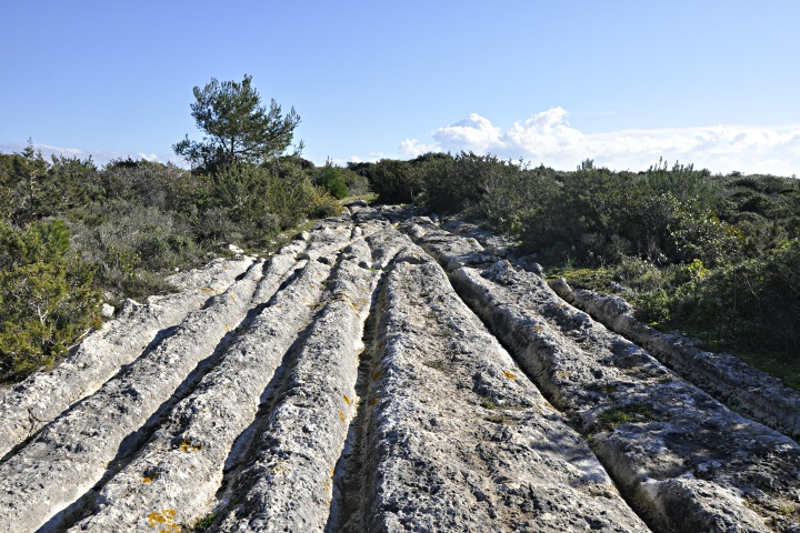 Furrows in the rocks