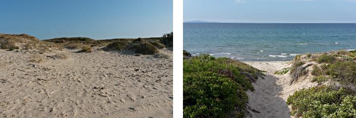 Les dunes de Platamona