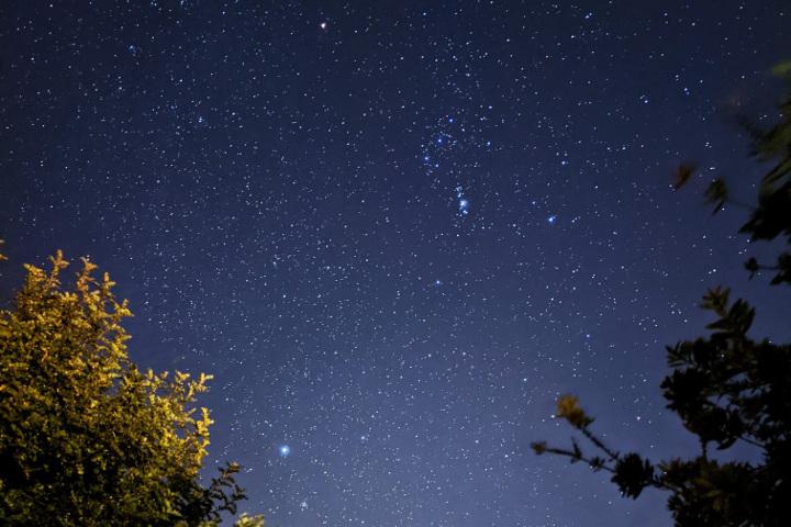 Constellations - Orion, Sirius, Rigel, Betelgeuse